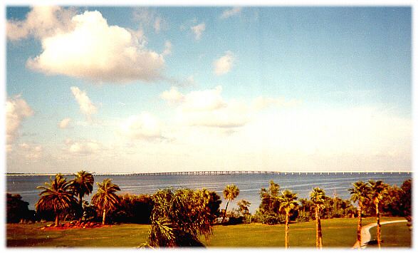 View of Tampa Bay